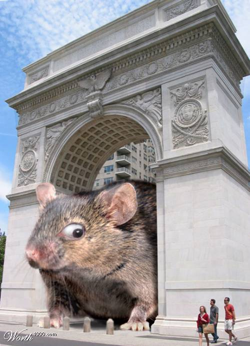 [Image: giant%20mouse.jpg]